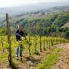 Franco i en af sine vinmarker ( her lige ved vingården)