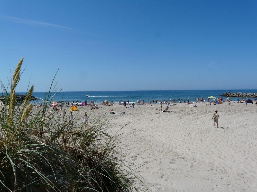 Strand Torsminde