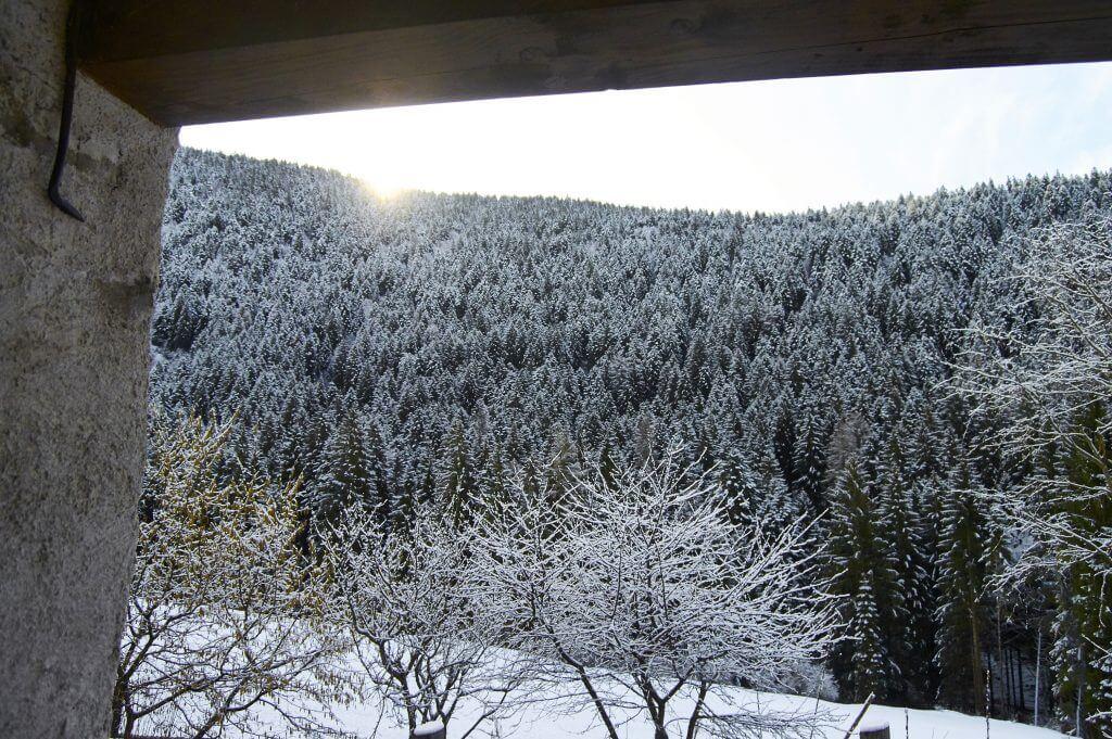 MountainHouse_16-1024x681