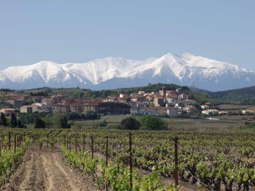 Montner med Pyrenæerne i baggrunden