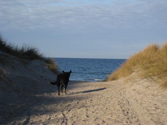strand i rørvig